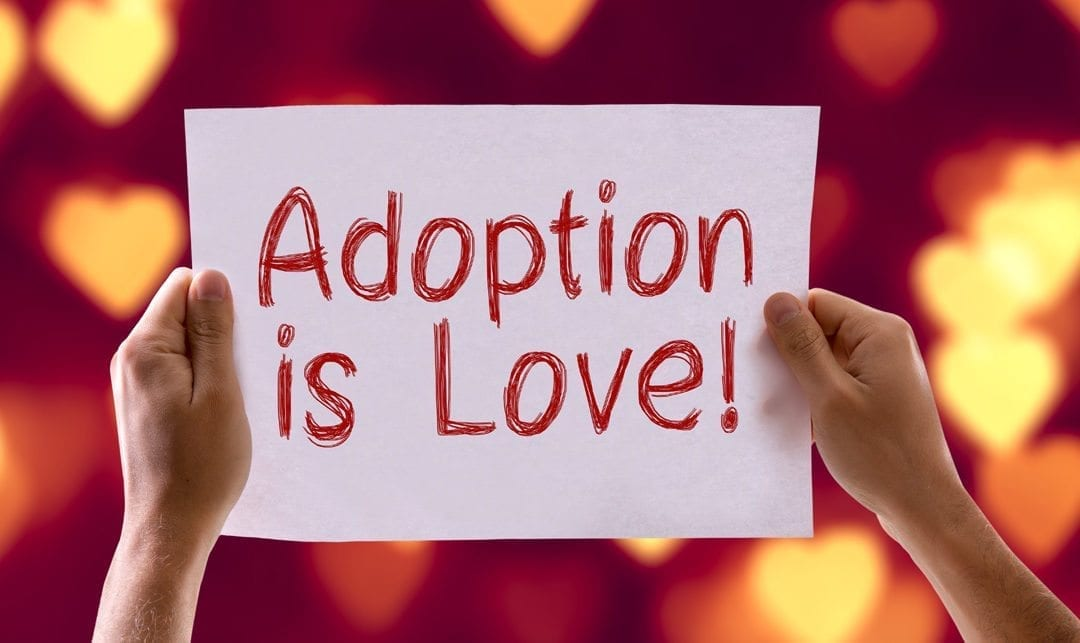 How do I choose an adoption agency?